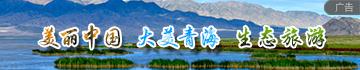 青海文旅(lv)